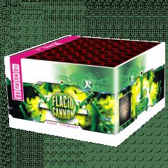 FLACID CANNON (nc)